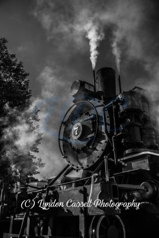 No-7_Steam_Train-Print_Port-Alberni.jpg