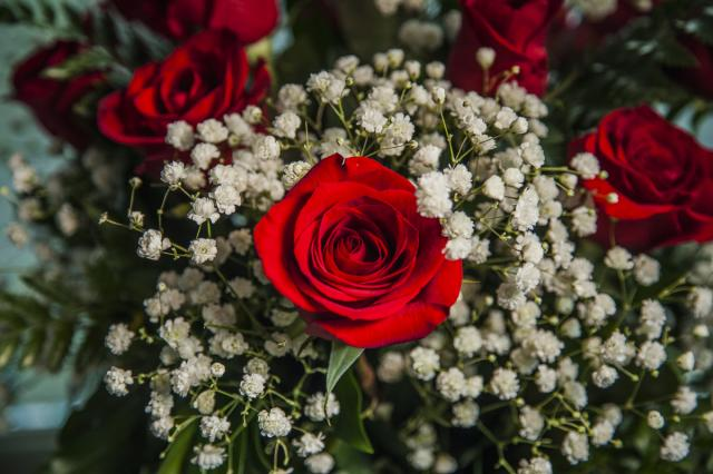 Happy_Valentine-Day_Roses_Port_Alberni.jpg