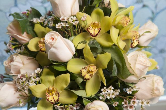 Cymbidium_Orchids_Port_Alberni.jpg