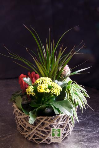 Planter-basket-port-alberni.jpg