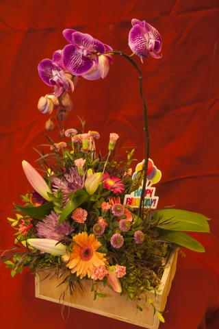 Happy_Birthday_Planter_Gift_Basket_Port_Alberni.jpg