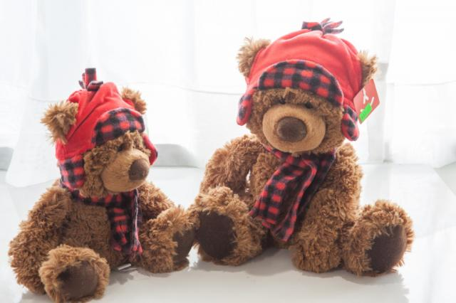 Stuffed-Toy-Gifts-Port-Alberni.jpg