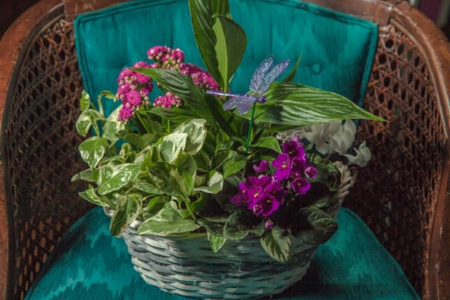 Planter-Basket-Gifts-Port-Alberni.jpg