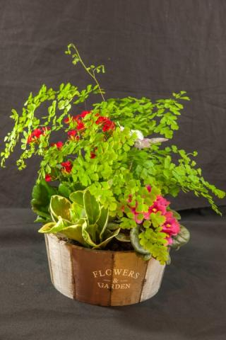 lcp-planter-basket-may12-2020-4742.jpg
