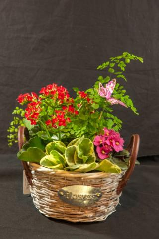 lcp-planter-basket-may12-2020-4750.jpg