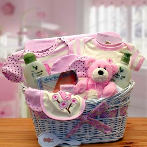 new-baby-girl-gift-basket-port_alberni.jpg