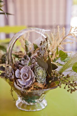 port-alberni-cactus-succulents-arrangement.jpg